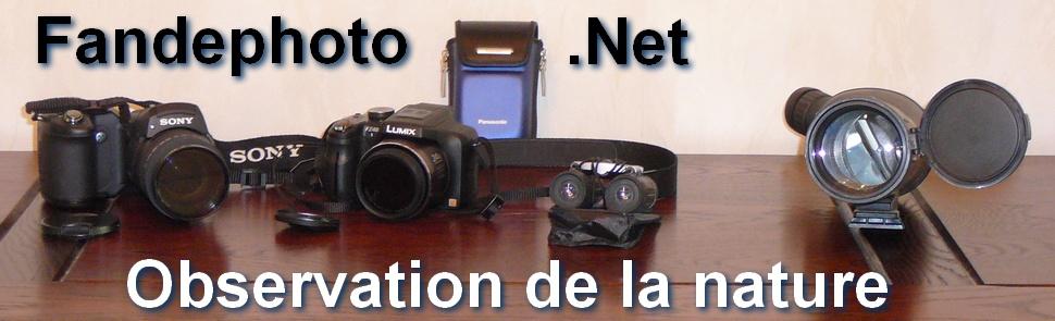 Fandephoto.net